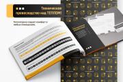 I will create a unique brand manual and unique brand identity 7 - kwork.com