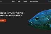 I will make a minimalistic and unique website 15 - kwork.com