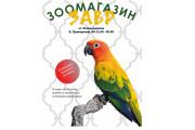 Graphic Design  Leaflets 8 - kwork.com