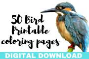 I will give you 50 bird mandala coloring book 6 - kwork.com