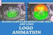 I will do text and logo animation with the effect of flying particles 2 - kwork.com