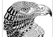 I will give you 50 bird mandala coloring book 5 - kwork.com