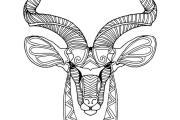 250 mandala animal coloring pages 6 - kwork.com