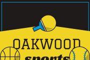 Cool logo for everything 5 - kwork.com