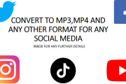 I Will Do Download youtube up to 5 GB of any videos Convert Video MP3 4 - kwork.com