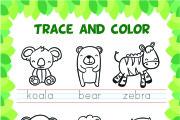 I will make montessori activity pages and workbook 18 - kwork.com