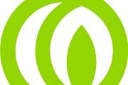Logotype and Identity Design 4 - kwork.com
