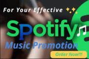 I will do viral spotify playlist promotion via playlist placement 11 - kwork.com