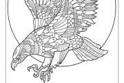 I will give you 50 bird mandala coloring book 4 - kwork.com