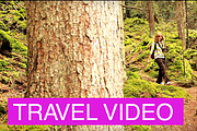 Video editing of your travels 6 - kwork.com